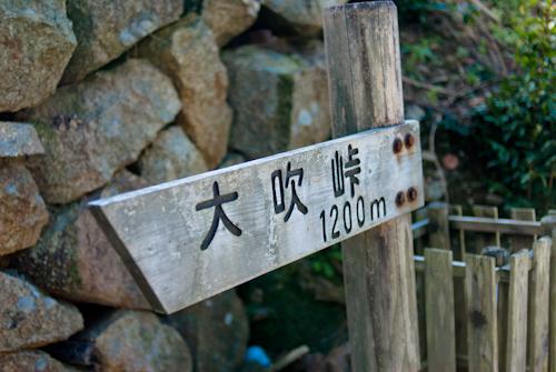 獅子座流星群と熊野古道