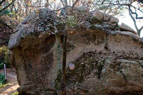 魚屋道・蛙岩